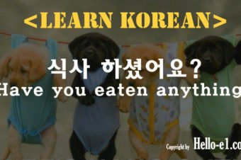 Have you eaten anything ? in Korean