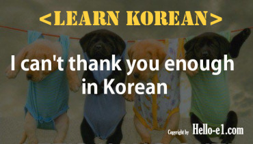 I can't thank you enough in Korean
