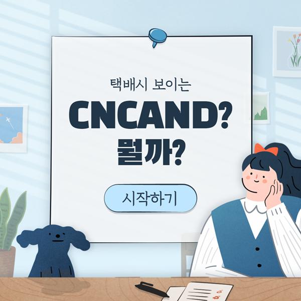 cncand 발송준비 1 cncand 발송준비 발송중 의미