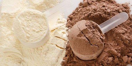 단백질파우더로 벌크업 하는법