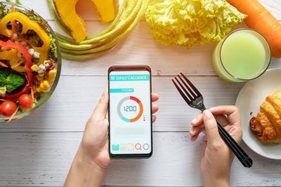 칼로리 계산 해야 하는 이유 설탕 건강에 진짜 안좋을까?(설탕 중독 테스트)